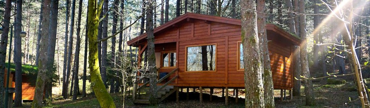What You Need to Know About Buying a Cabin With a Private Well